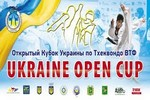 Октябрь 2013г. Ukraine Open Cup 2013 (г.Харьков)